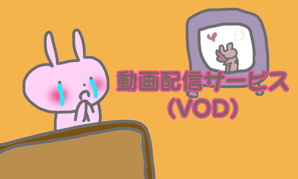 ✅動画配信サービス